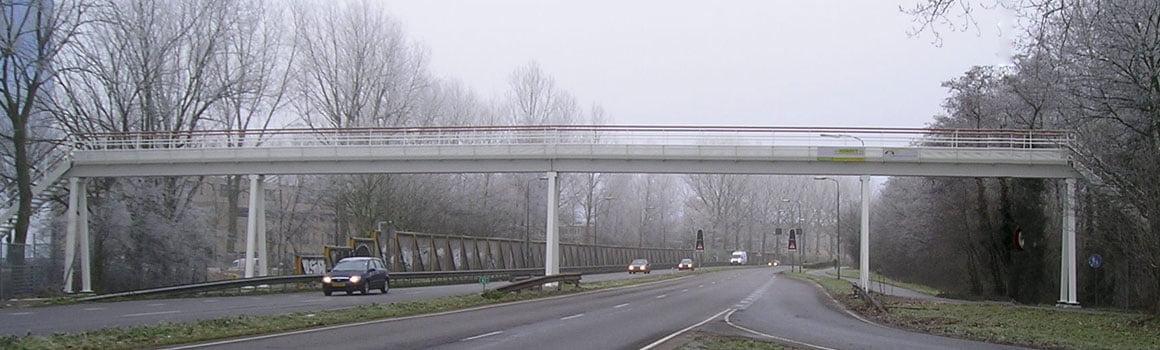 kunststof_brug_liggerbrug_grootlemmerbruggen_5078_Delft_1d